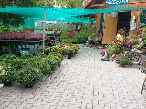 zahrada-7